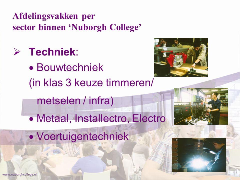  Zorg & Welzijn:  Zorg en Welzijn breed  Groen (landbouw):  Groen breed Afdelingsvakken per sector binnen 'Nuborgh College'