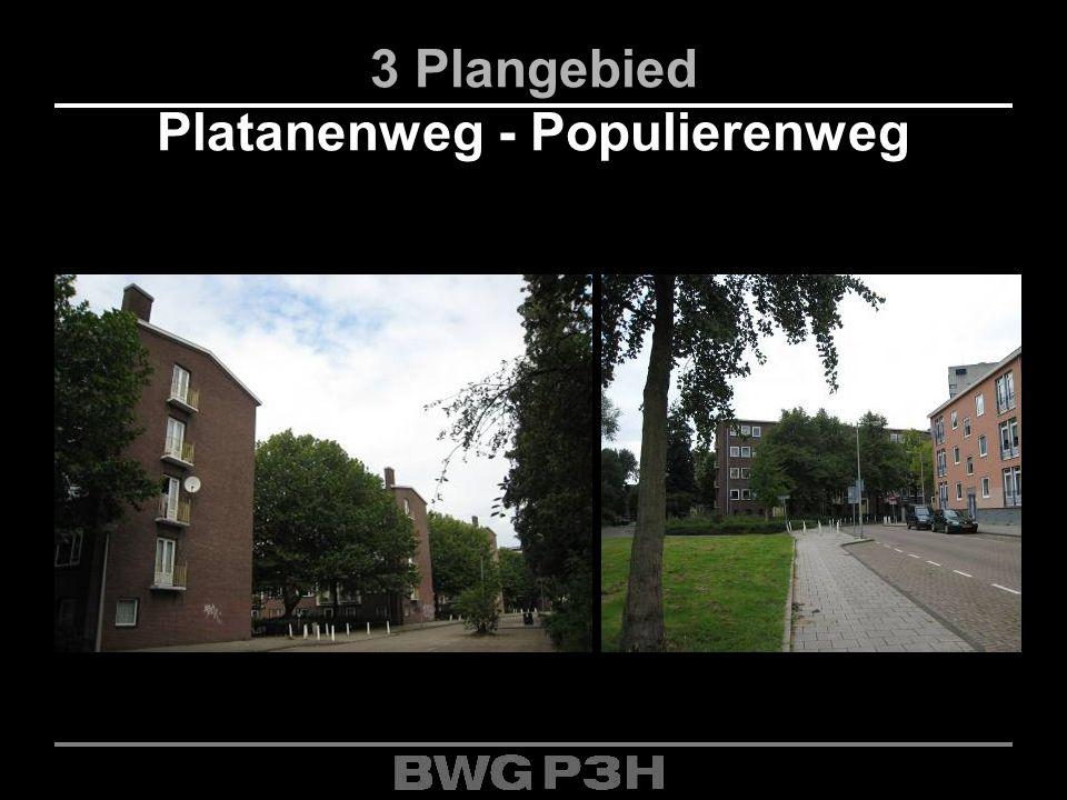 3 Plangebied Platanenweg - Populierenweg