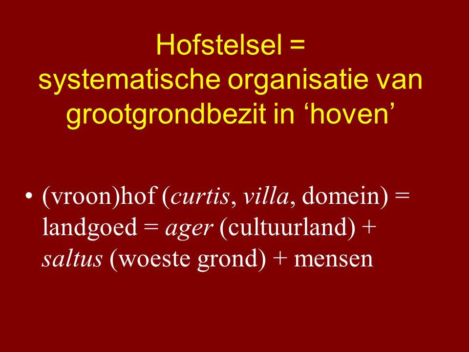 Hofstelsel = systematische organisatie van grootgrondbezit in 'hoven' (vroon)hof (curtis, villa, domein) = landgoed = ager (cultuurland) + saltus (woeste grond) + mensen