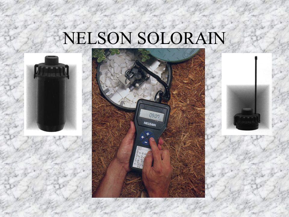NELSON SOLORAIN