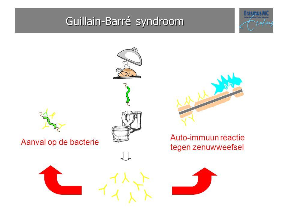 Guillain-Barré syndroom Aanval op de bacterie M  Auto-immuun reactie tegen zenuwweefsel