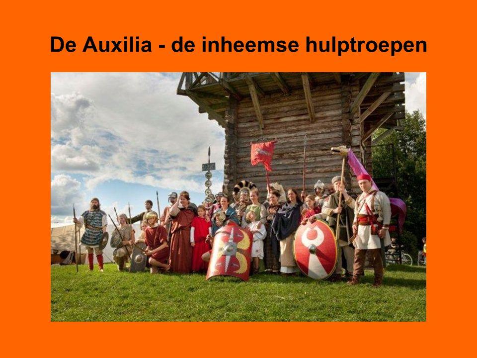 De Auxilia - de inheemse hulptroepen