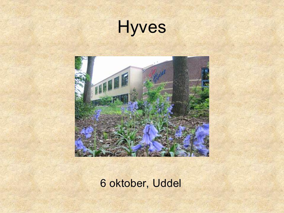 Hyves 6 oktober, Uddel