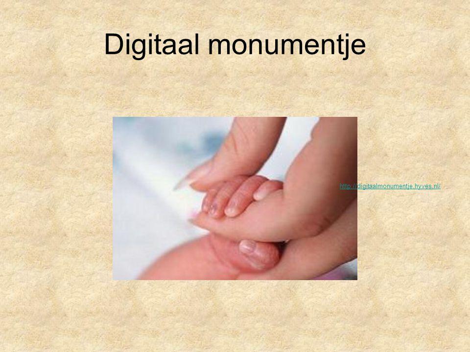 Digitaal monumentje http://digitaalmonumentje.hyves.nl/