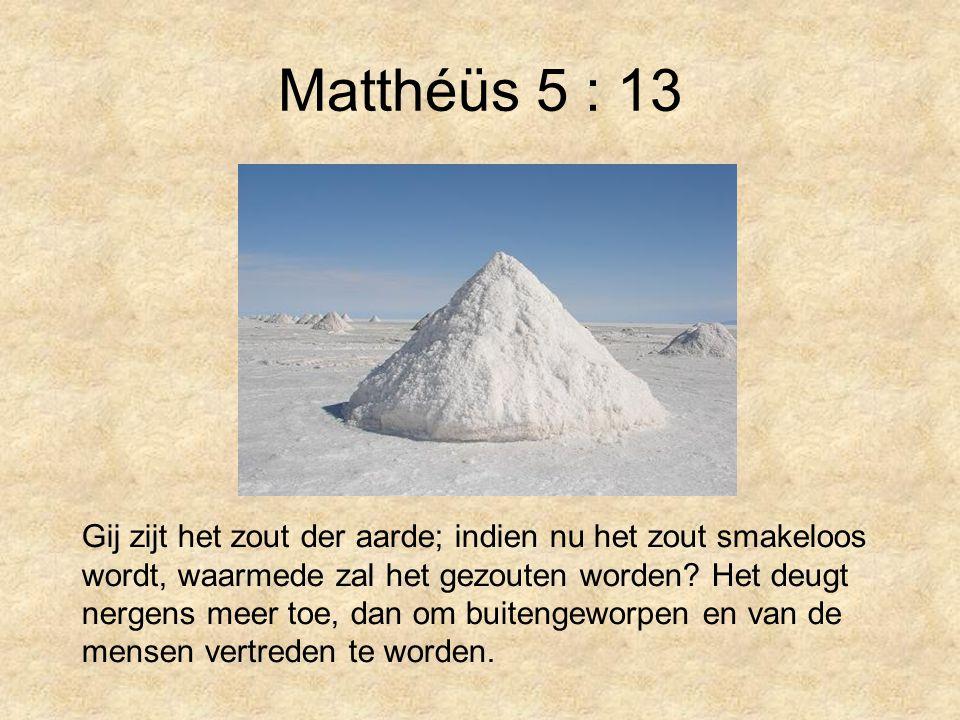 Matthéüs 5 : 13 Gij zijt het zout der aarde; indien nu het zout smakeloos wordt, waarmede zal het gezouten worden.