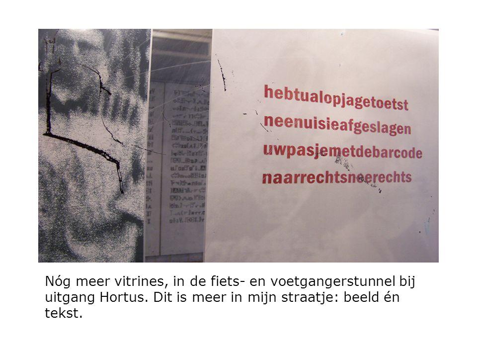 Nóg meer vitrines, in de fiets- en voetgangerstunnel bij uitgang Hortus. Dit is meer in mijn straatje: beeld én tekst.