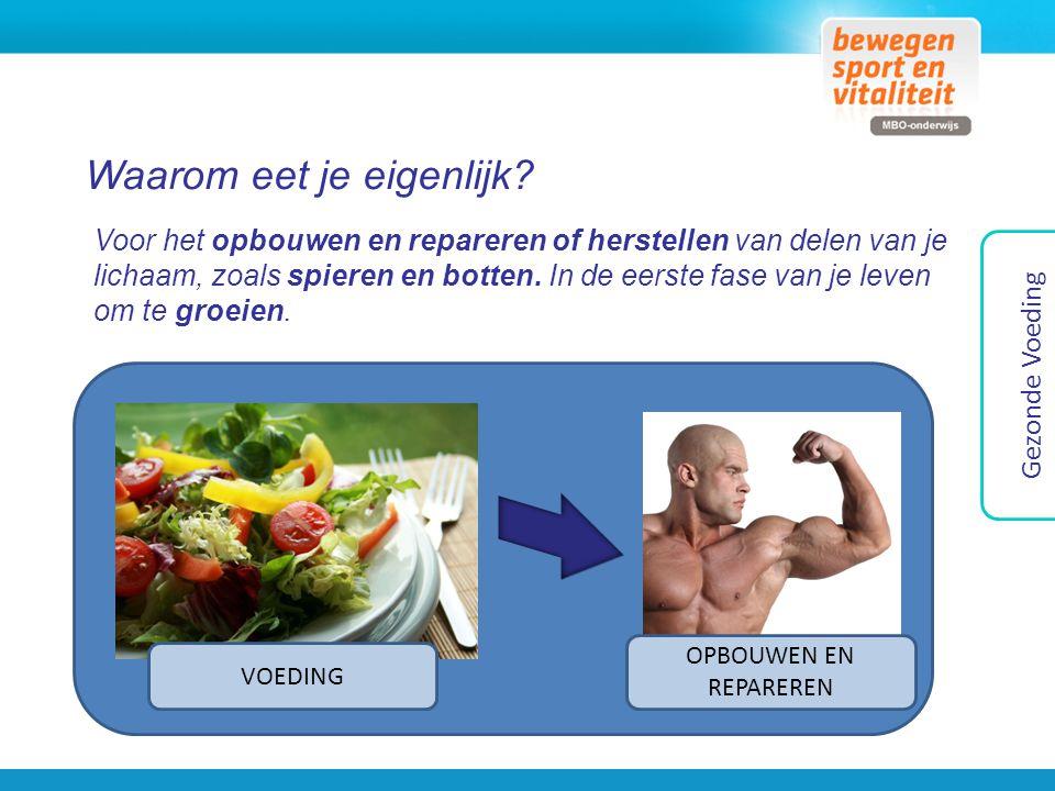 Waarom eet je eigenlijk? Voor het opbouwen en repareren of herstellen van delen van je lichaam, zoals spieren en botten. In de eerste fase van je leve