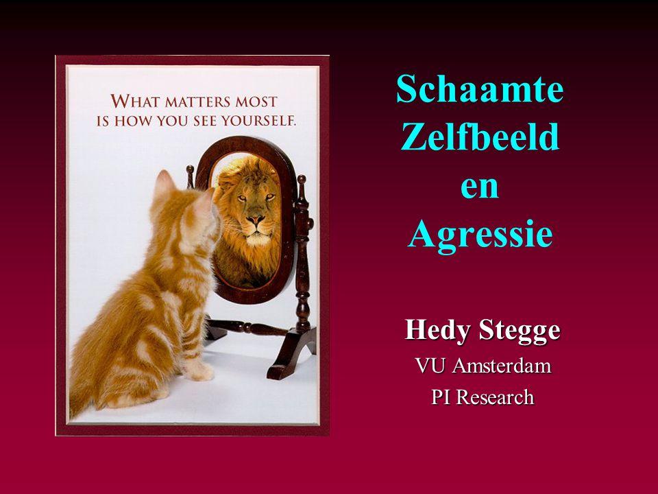 Schaamte Zelfbeeld en Agressie Hedy Stegge VU Amsterdam PI Research