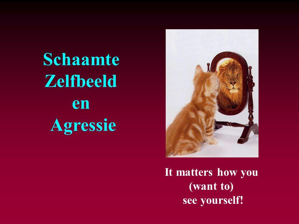 It matters how you (want to) see yourself! Schaamte Zelfbeeld en Agressie