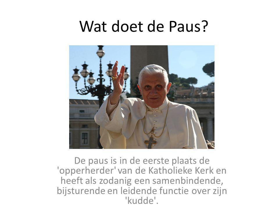 Wat doet de Paus? De paus is in de eerste plaats de 'opperherder' van de Katholieke Kerk en heeft als zodanig een samenbindende, bijsturende en leiden
