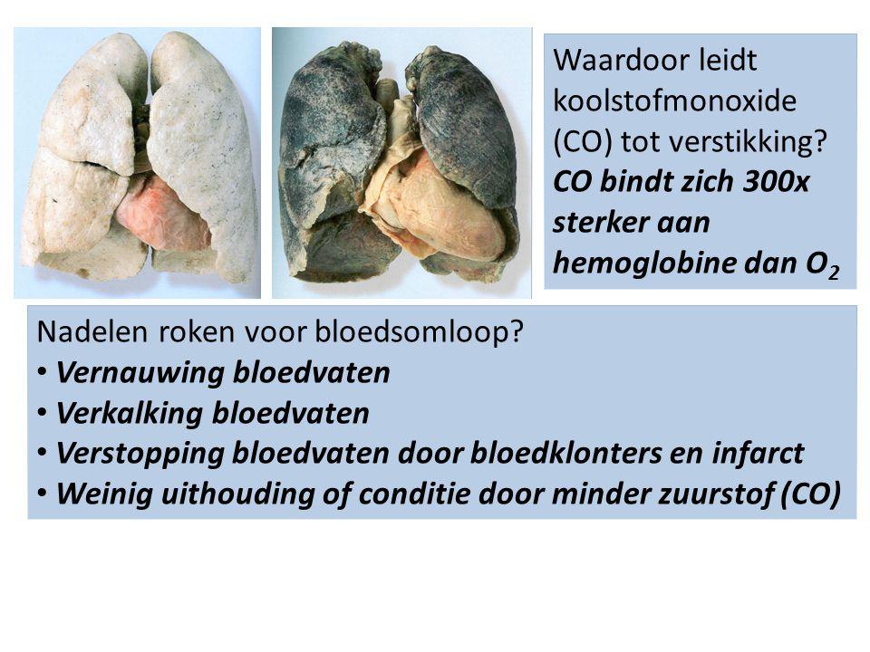 Nadelen roken voor bloedsomloop? Vernauwing bloedvaten Verkalking bloedvaten Verstopping bloedvaten door bloedklonters en infarct Weinig uithouding of