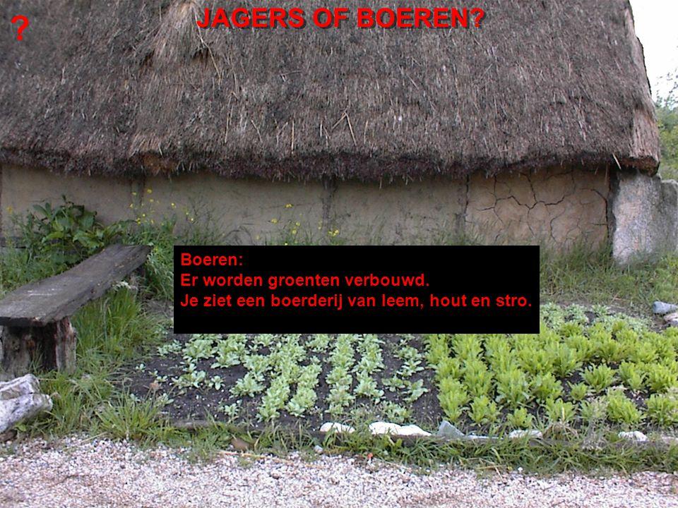 Boeren: Er worden groenten verbouwd.Je ziet een boerderij van leem, hout en stro.