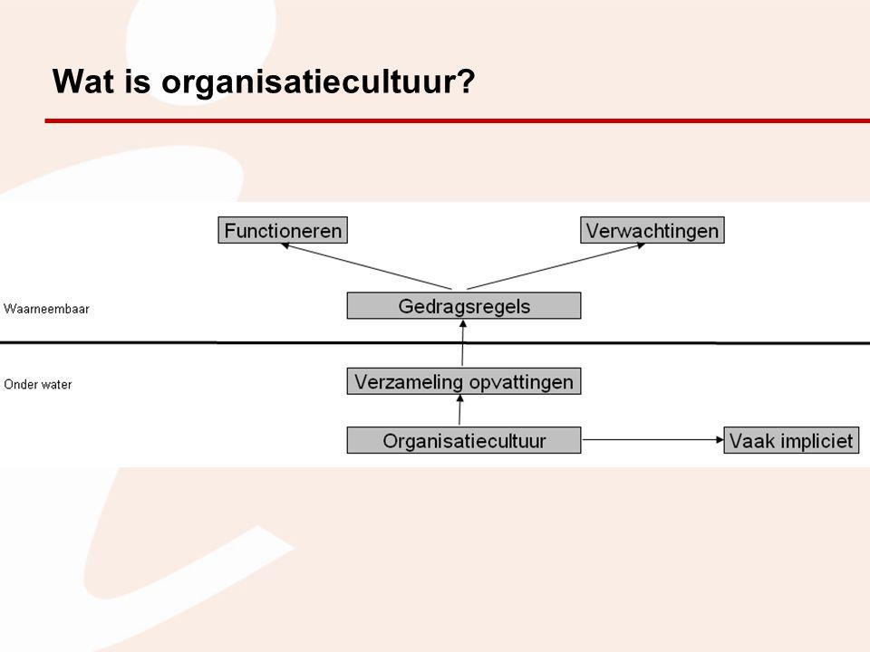 Wat is organisatiecultuur?