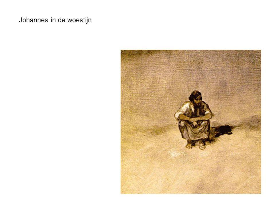 Johannes in de woestijn