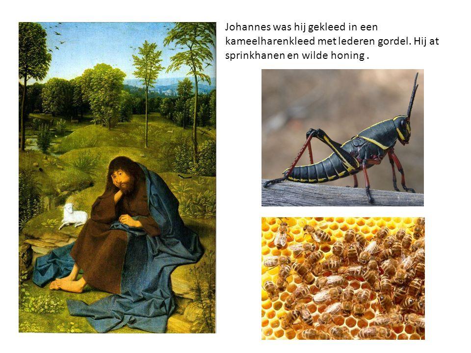 Johannes was hij gekleed in een kameelharenkleed met lederen gordel. Hij at sprinkhanen en wilde honing.