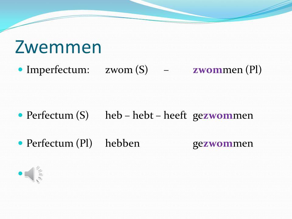 Zullen  !!! Geen participium Imperfectum: zou (S) – zouden (Pl)