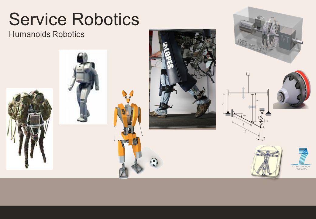 Service Robotics Humanoids Robotics