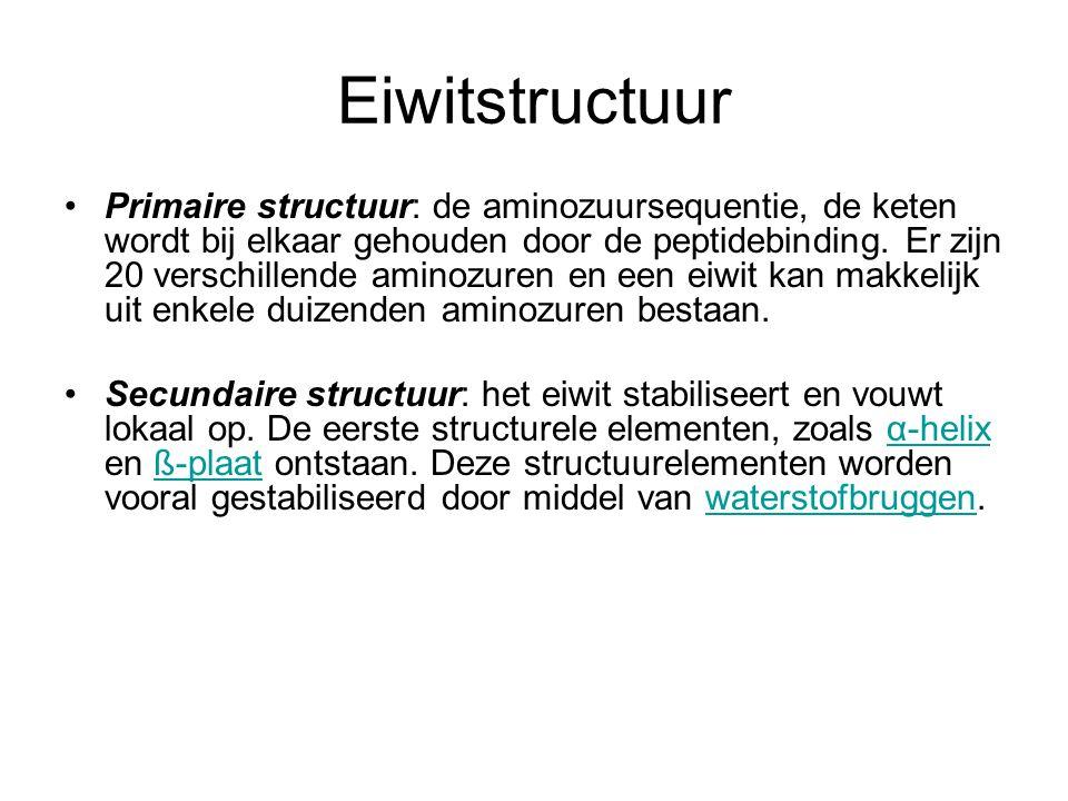 Eiwitstructuur Primaire structuur: de aminozuursequentie, de keten wordt bij elkaar gehouden door de peptidebinding. Er zijn 20 verschillende aminozur