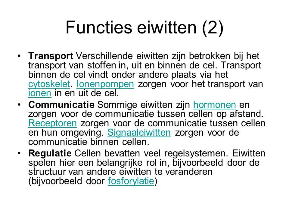 Functies eiwitten (2) Transport Verschillende eiwitten zijn betrokken bij het transport van stoffen in, uit en binnen de cel. Transport binnen de cel