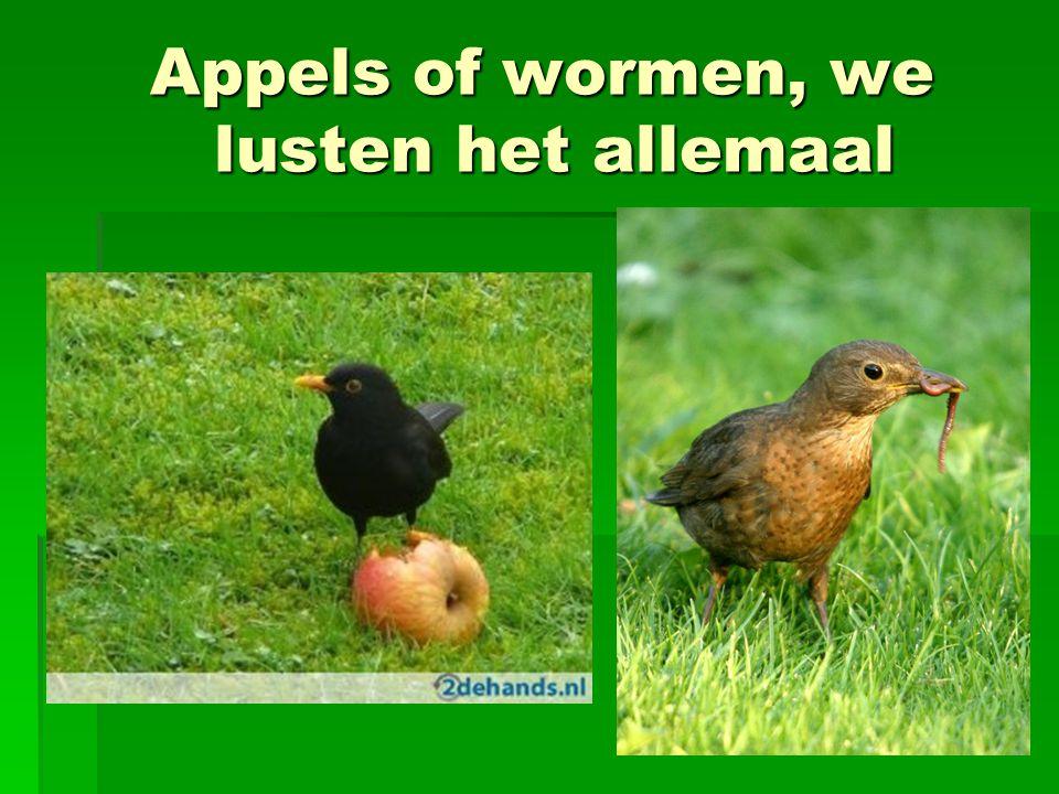 Appels of wormen, we lusten het allemaal Appels of wormen, we lusten het allemaal