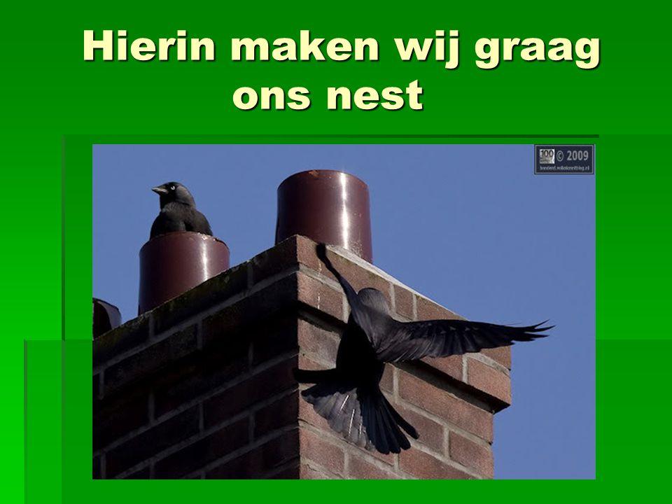Hierin maken wij graag ons nest Hierin maken wij graag ons nest