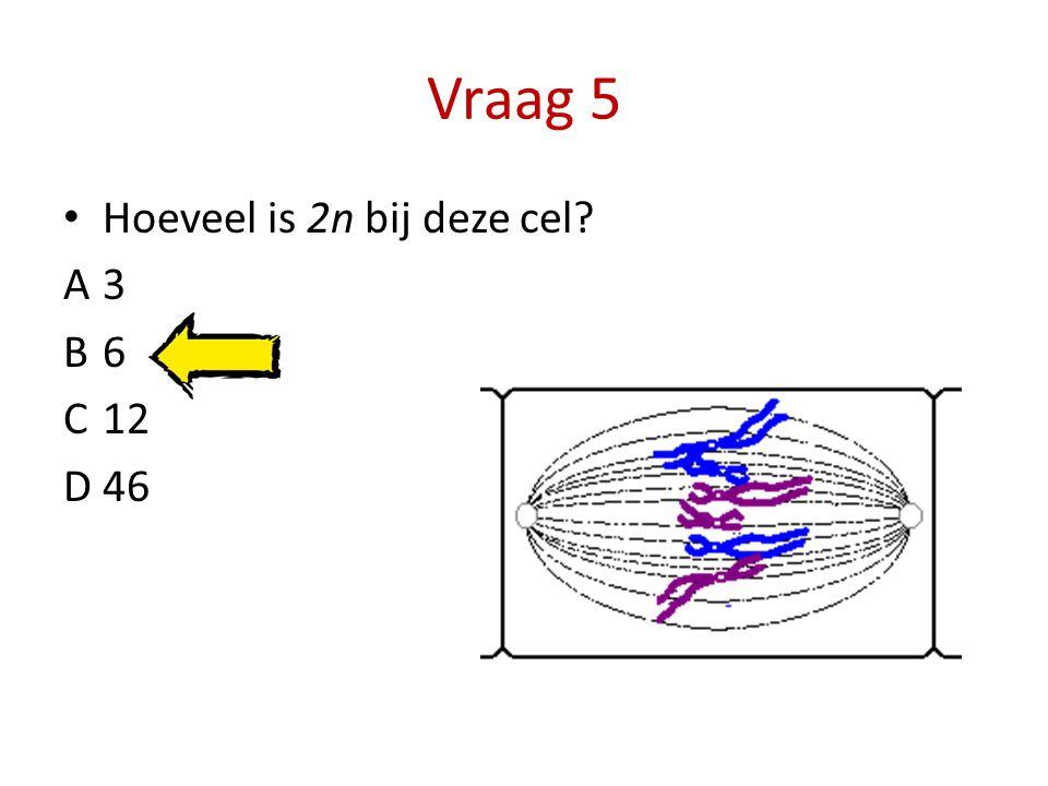 Vraag 5 Hoeveel is 2n bij deze cel? A3 B6 C12 D46