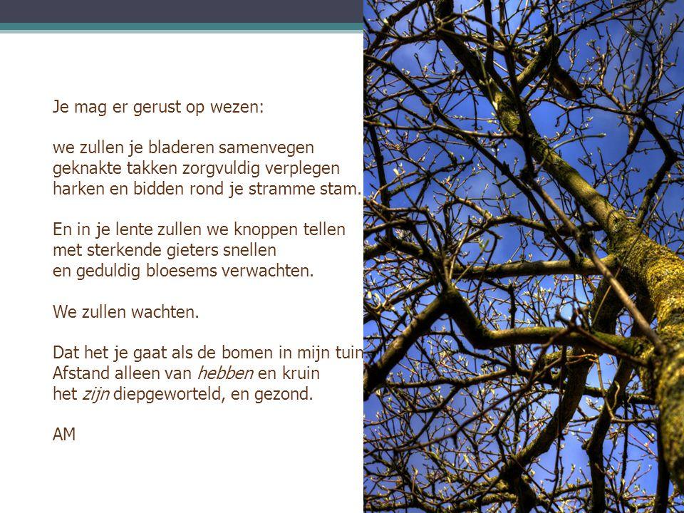 Je mag er gerust op wezen: we zullen je bladeren samenvegen geknakte takken zorgvuldig verplegen harken en bidden rond je stramme stam. En in je lente