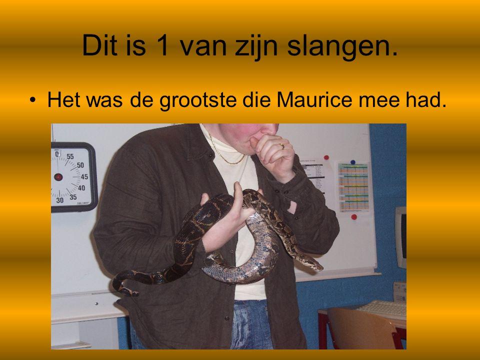 Dit is 1 van zijn slangen. Het was de grootste die Maurice mee had.