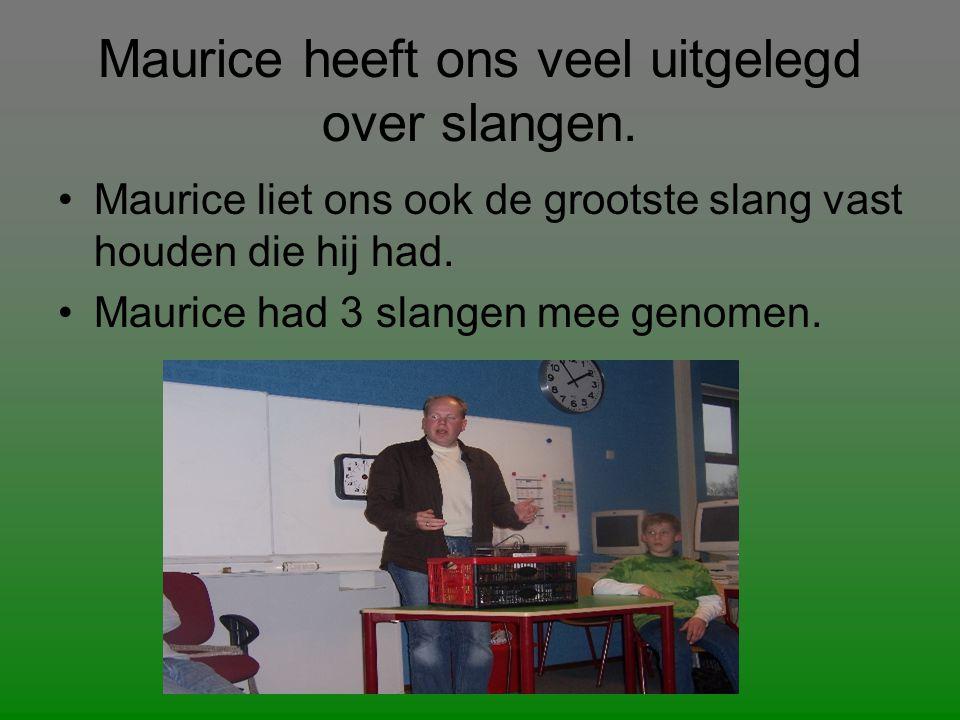 Maurice heeft ons veel uitgelegd over slangen.