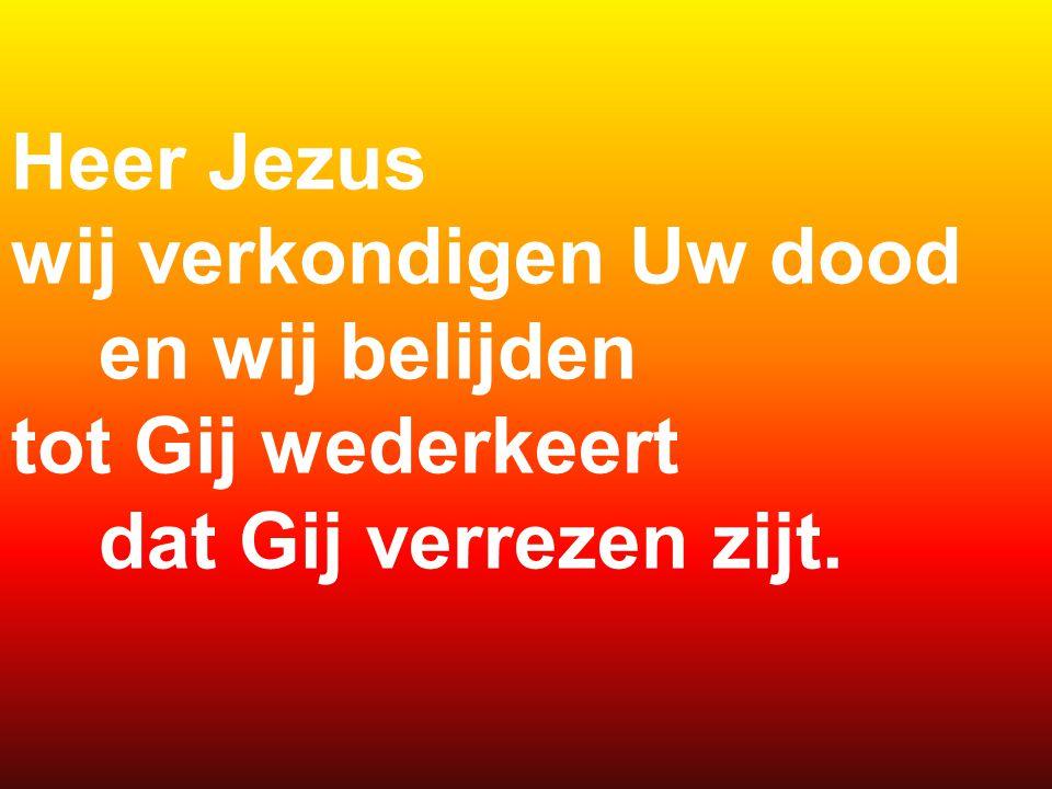 Heer Jezus wij verkondigen Uw dood en wij belijden tot Gij wederkeert dat Gij verrezen zijt.