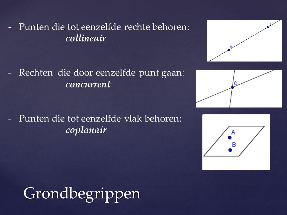 Grondbegrippen -Punten die tot eenzelfde rechte behoren: collineair -Rechten die door eenzelfde punt gaan: concurrent -Punten die tot eenzelfde vlak b