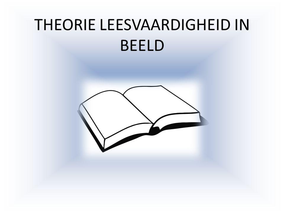 THEORIE LEESVAARDIGHEID IN BEELD