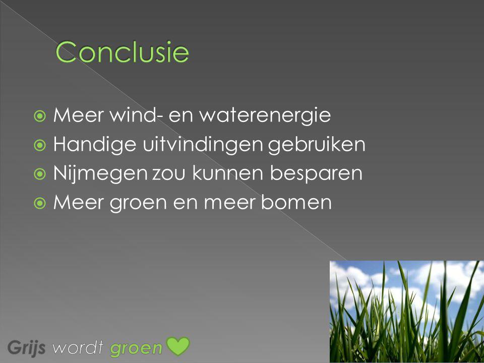MMeer wind- en waterenergie HHandige uitvindingen gebruiken NNijmegen zou kunnen besparen MMeer groen en meer bomen