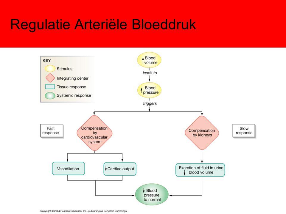 Regulatie Arteriële Bloeddruk