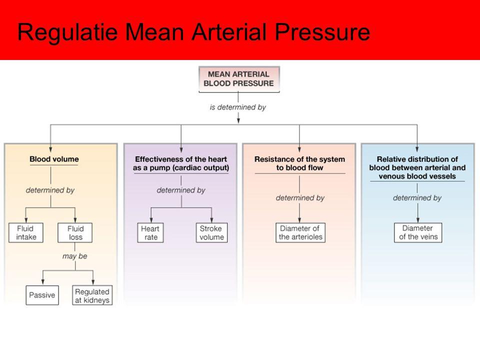 Regulatie Mean Arterial Pressure