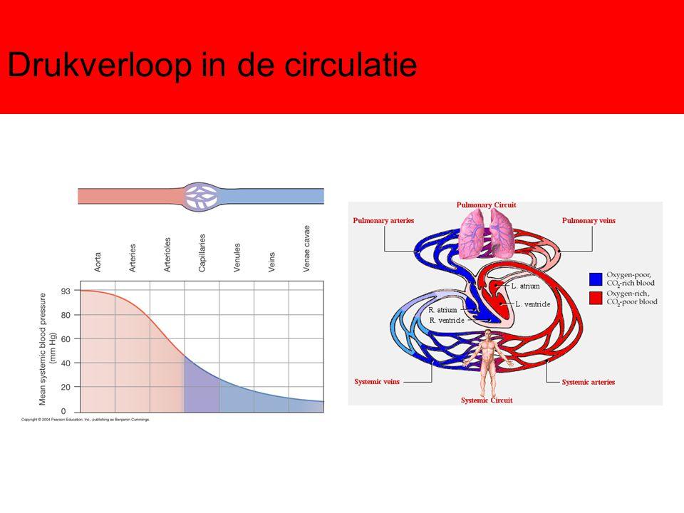 Determinanten MAP Toename CO met gelijkblijvende R perifeer : MAP> Toename R perifeer met gelijkblijvende CO: MAP> Andere determinanten: –totale bloedvolume –Verdeling bloed veneus/arteriëel