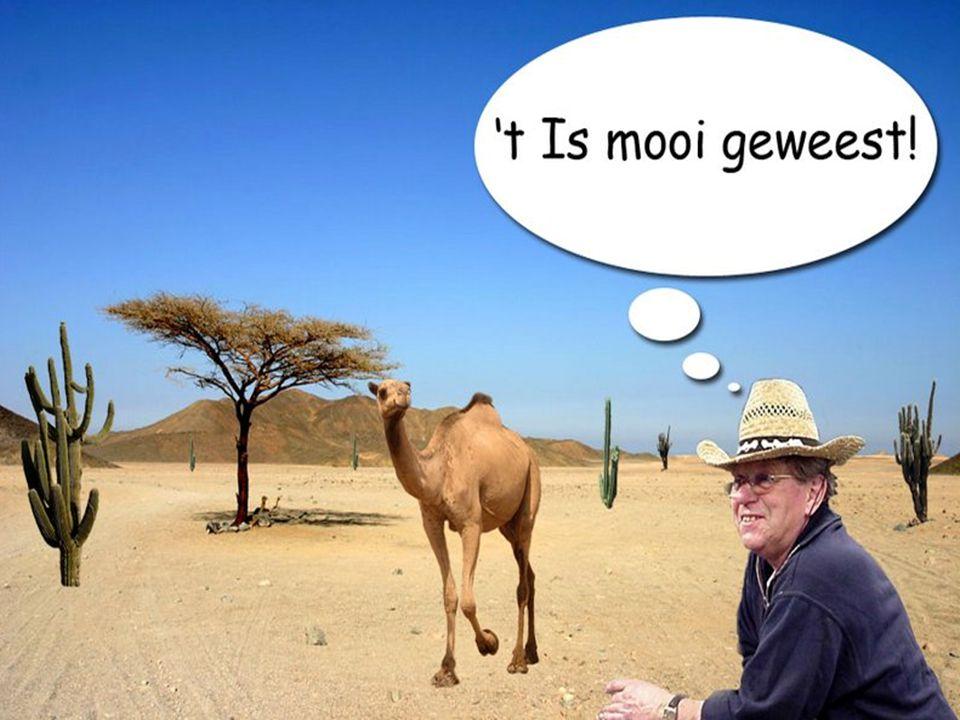 © 2010 Noordhoff Uitgevers bv, Groningen/Houten Communicatie Handboek 52
