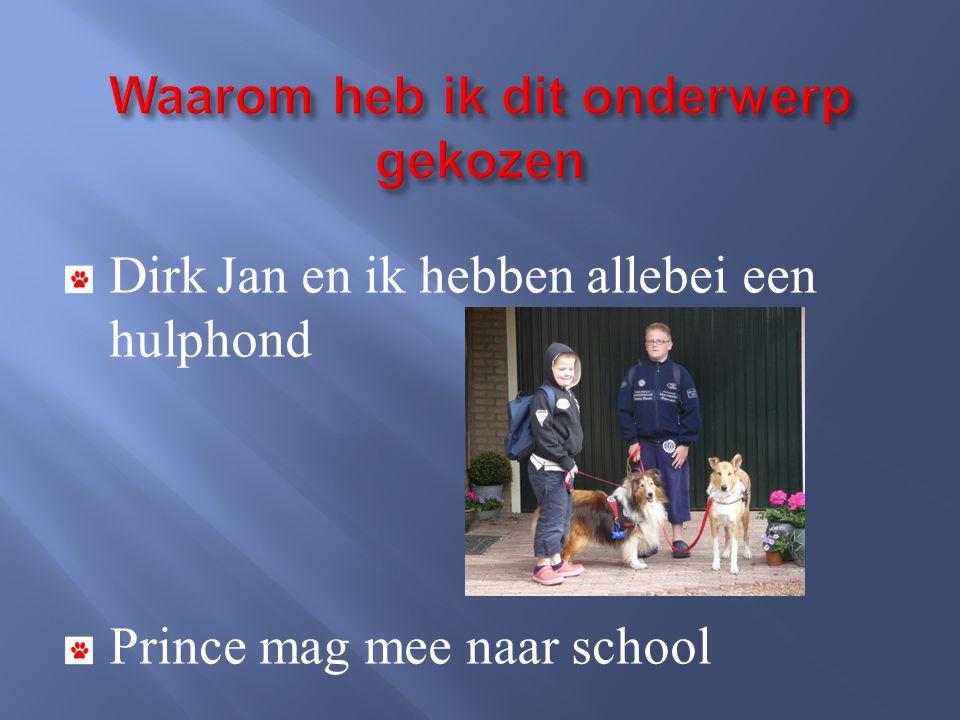 Dirk Jan en ik hebben allebei een hulphond Prince mag mee naar school