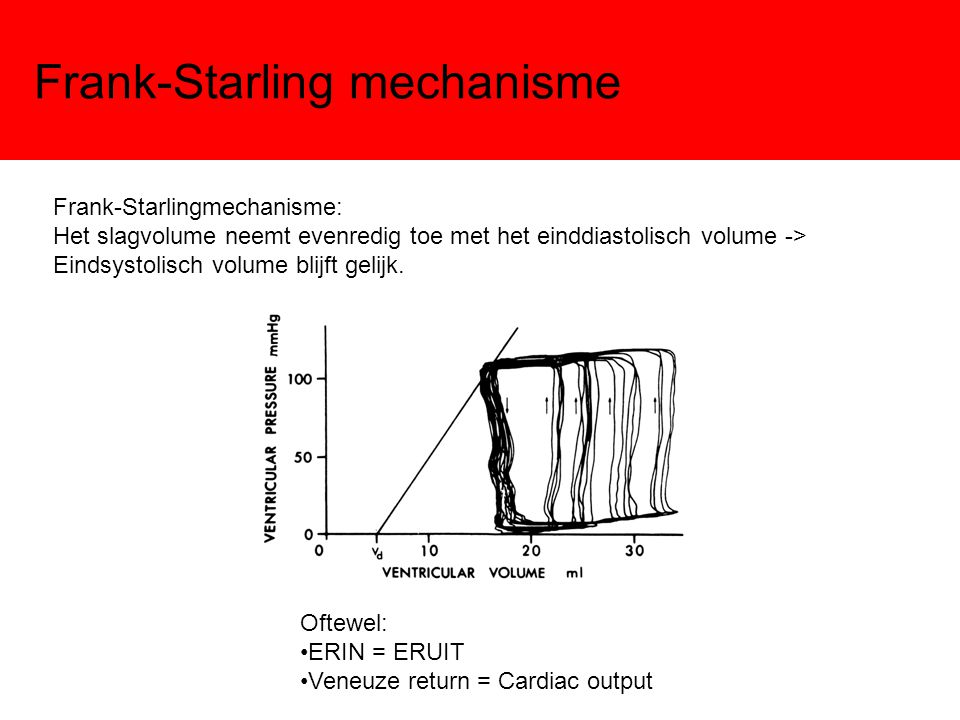 Frank-Starling mechanisme Frank-Starlingmechanisme: Het slagvolume neemt evenredig toe met het einddiastolisch volume -> Eindsystolisch volume blijft