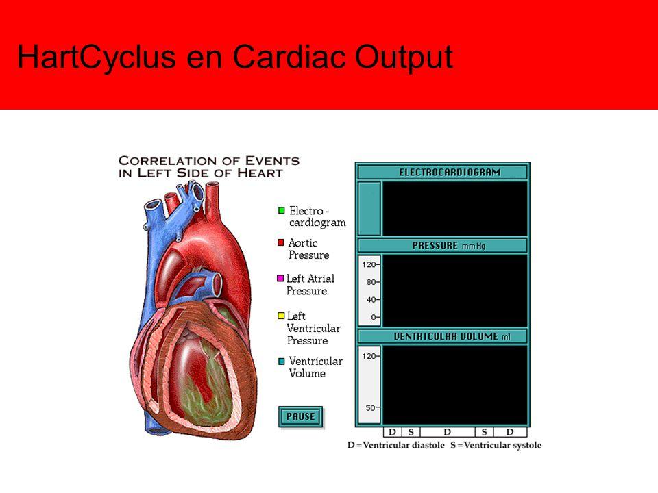 Cardiac Output - Hartminuutvolume Cardiac Output of Hartminuutvolume: het aantal liters bloed dat je hart per minuut rondpompt CO = hartfrequentie x slagvolume