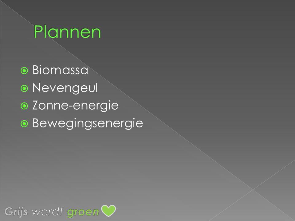 Biomassa  Nevengeul  Zonne-energie  Bewegingsenergie
