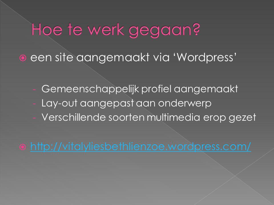  een site aangemaakt via 'Wordpress' - Gemeenschappelijk profiel aangemaakt - Lay-out aangepast aan onderwerp - Verschillende soorten multimedia erop