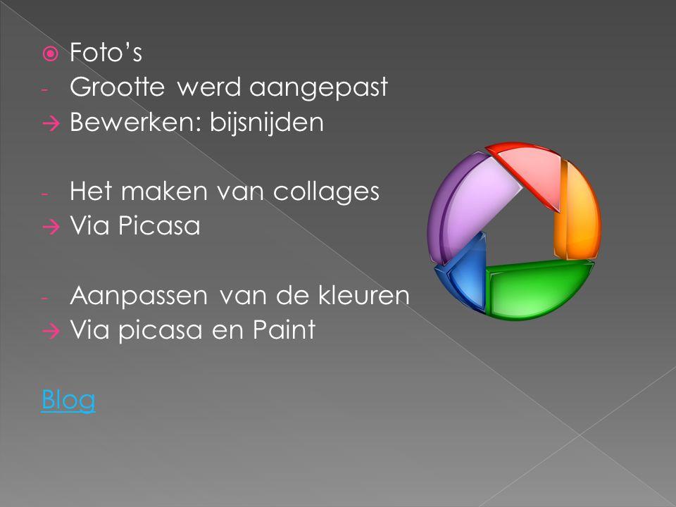  Foto's - Grootte werd aangepast  Bewerken: bijsnijden - Het maken van collages  Via Picasa - Aanpassen van de kleuren  Via picasa en Paint Blog