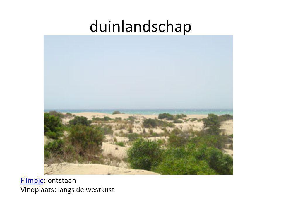laagveenlandschap FilmpjeFilmpje: ontstaan Vindplaats: Laag Nederland (Amstelveen, Vinkeveen)