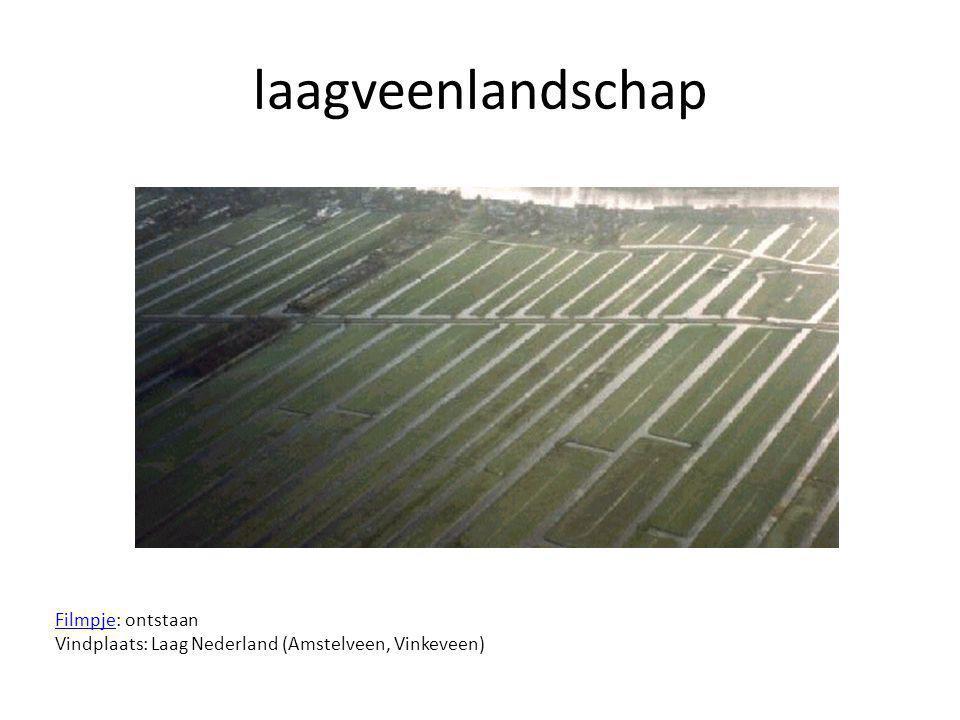 hoogveenlandschap FilmpjeFilmpje1: ontstaan Filmpje 2Filmpje 2: kenmerken Vindplaats: Hoog Nederland (Heerenveen, Veendam)