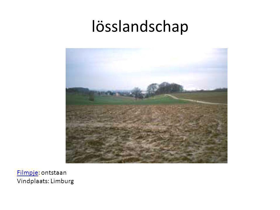 lösslandschap FilmpjeFilmpje: ontstaan Vindplaats: Limburg