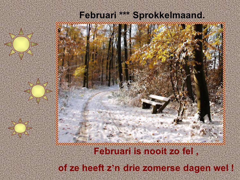 Januari *** Louwmaand Geeft januari een sneeuwtapijt, dan zijn we gauw de winter kwijt
