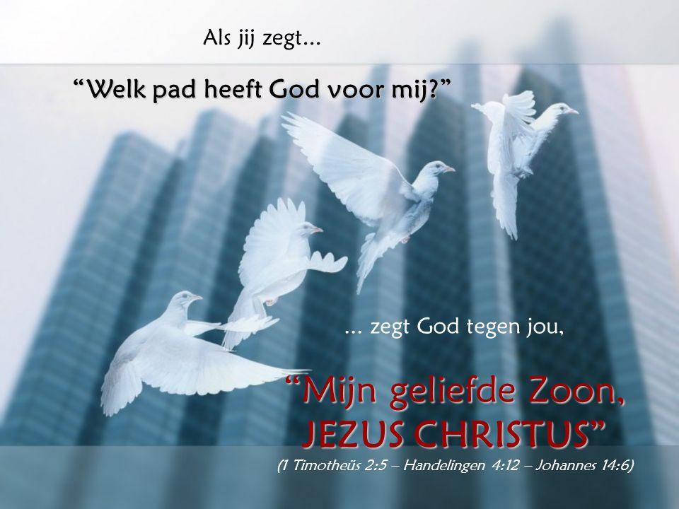 """Als jij zegt... """"Ik weet niet hoe ik verder moet gaan...""""... zegt God tegen jou, """"Ik geef inzicht en wijs de weg die je moet gaan"""" (Psalm 32:8)"""