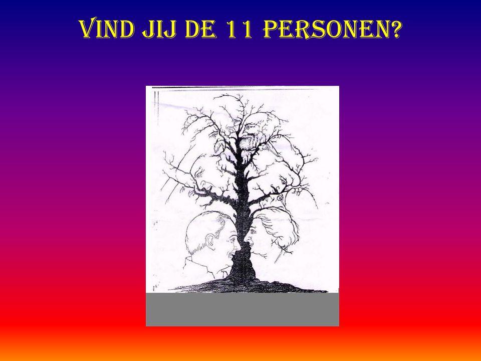 Vind jij de 11 personen?