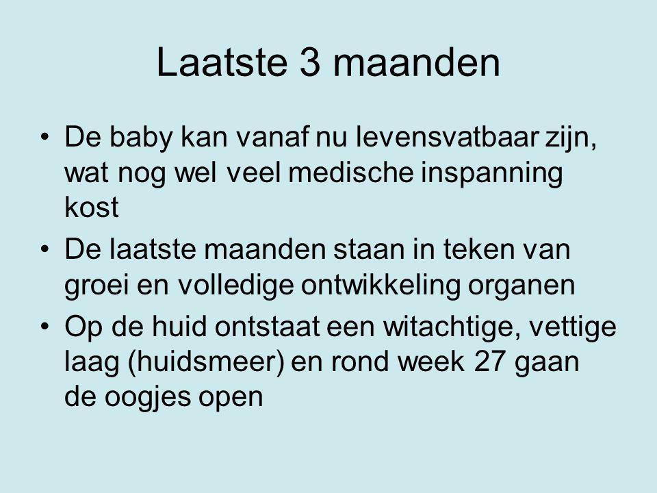 Laatste 3 maanden De baby kan vanaf nu levensvatbaar zijn, wat nog wel veel medische inspanning kost De laatste maanden staan in teken van groei en vo
